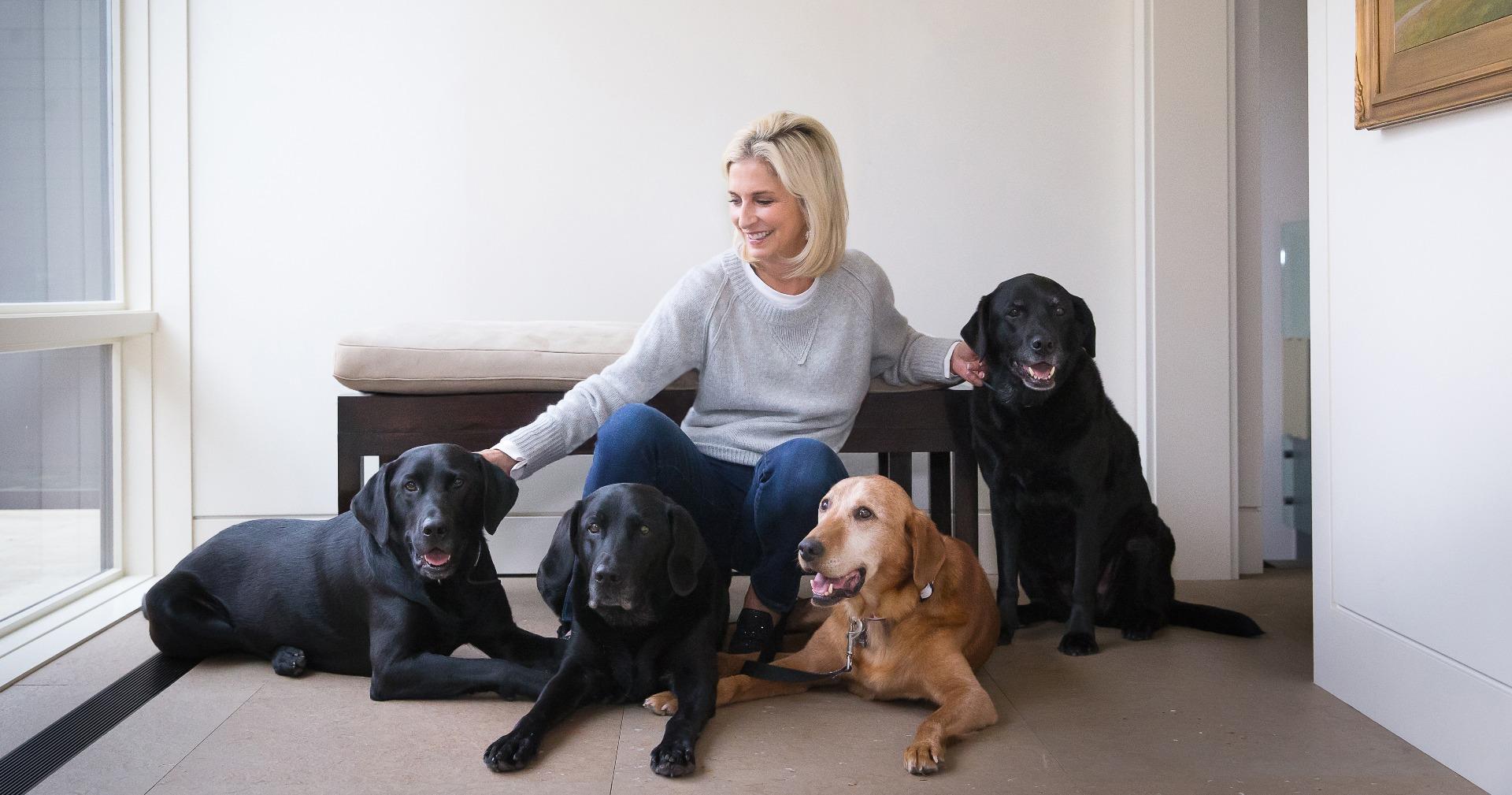 BISSELL Pet Foundation – v útulcích po celé zemi se nachází miliony domácích mazlíčků. Nadace BISSELL Pet Foundation je odhodlána ukončit bezdomovectví domácích zvířat a nalézt každému z nich milující rodinu.