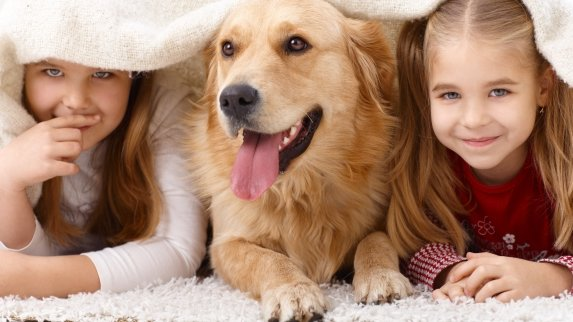 Pet related chores for children: how young is too young?