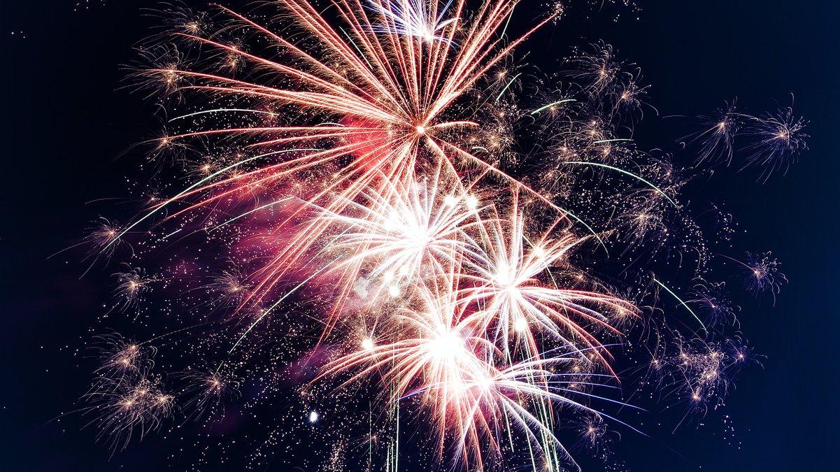 Keeping pets calm through fireworks