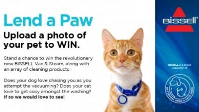 The best of Lend a Paw, May 2014